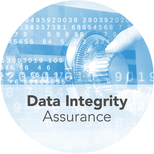 Data Integrity Services