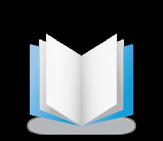 Data Integrity Paper